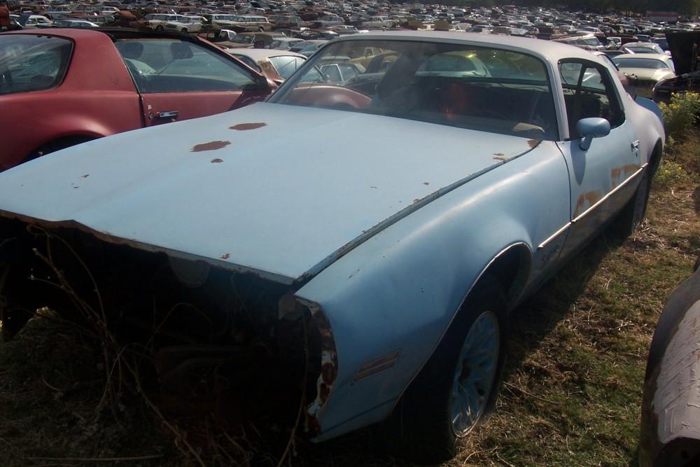 1977 Pontiac Firebird Parts Car 2